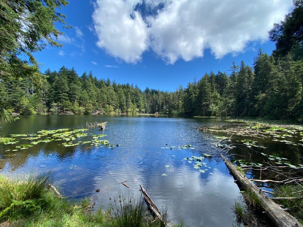 Twin Lakes Moran State Park